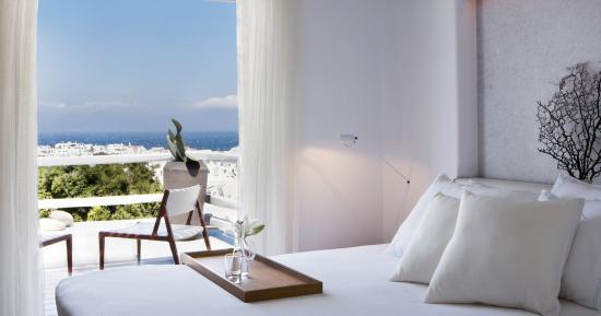 Main Hotel Rooms & Suites